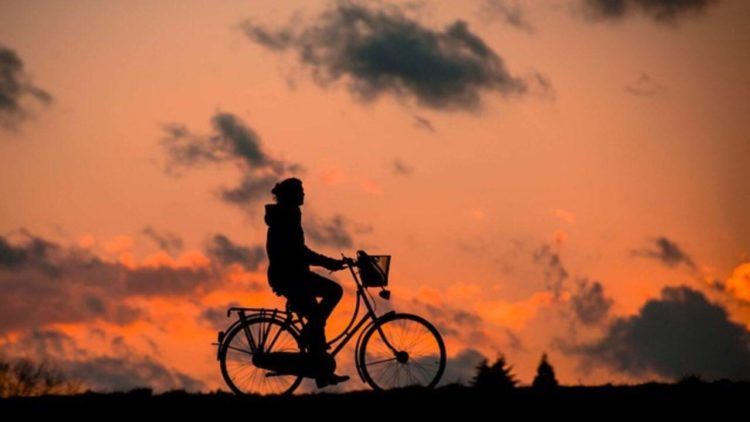 Día Internacional de la Bicicleta