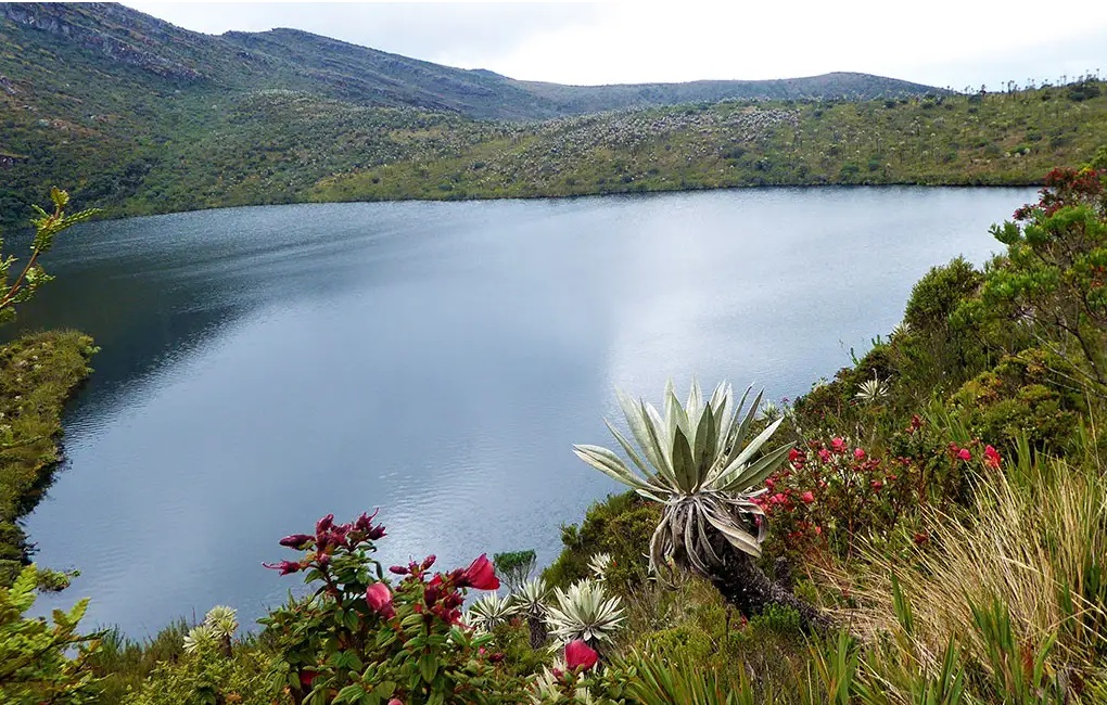 Reabren el parque natural Chingaza
